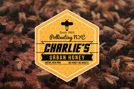 CHARLIE'S URBAN HONEY